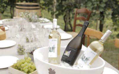 Il secchiello del vino a cosa serve?