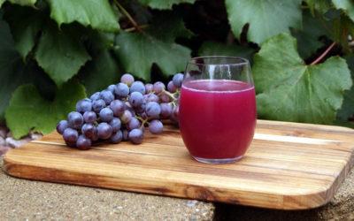 3 ricette analcoliche a base di uva